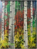 "The image for Public Class ""Aspen Forest"""
