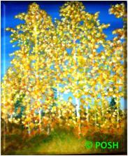 "The image for Public Class ""Aspen Autumn"""